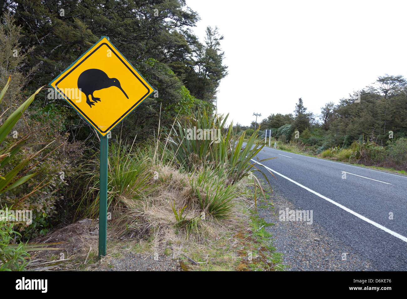 Kiwi sign near the road, Northern Island, New Zealand - Stock Image