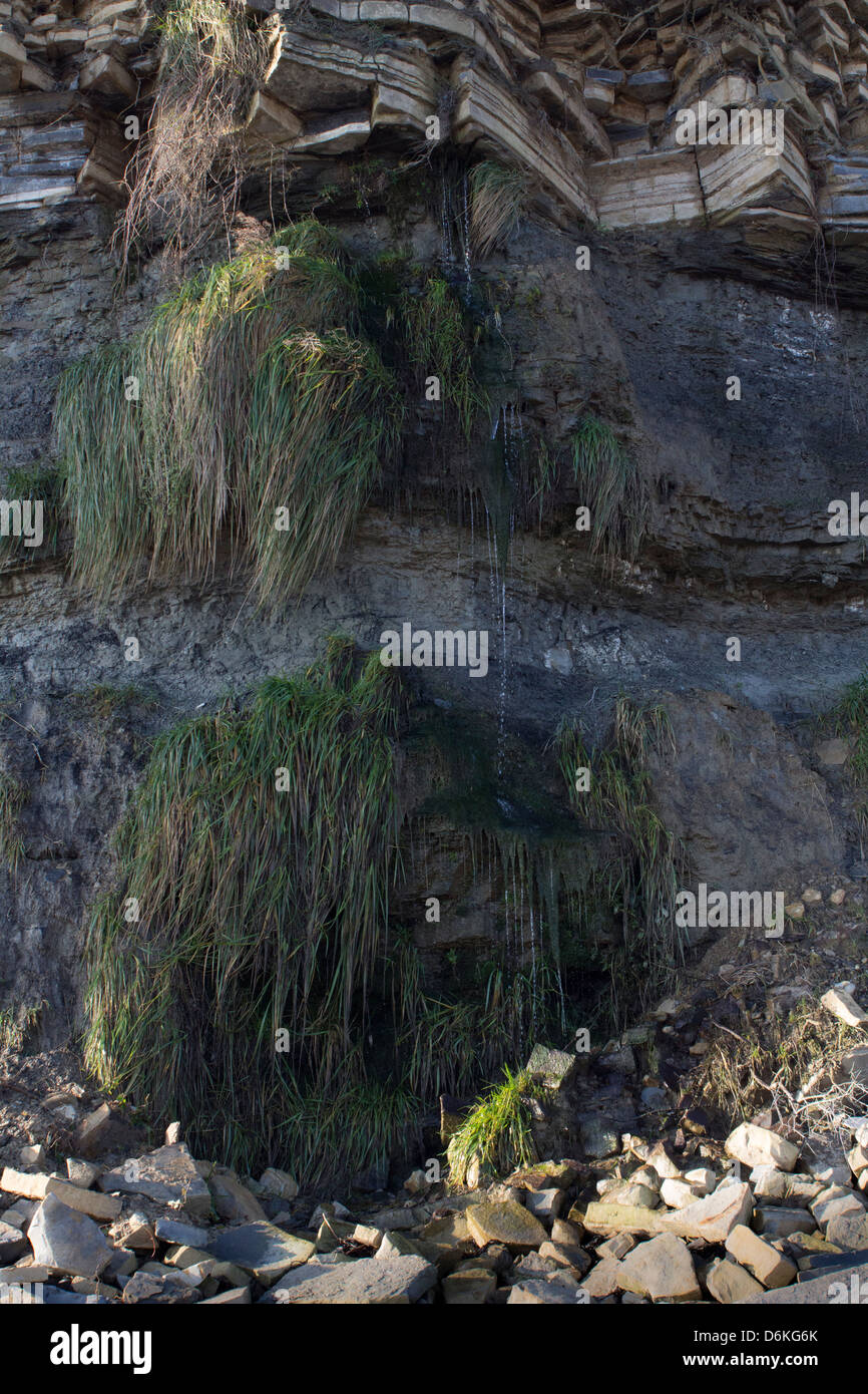 A small waterfall cascades down the cliff face at Penarth in South Wales. - Stock Image