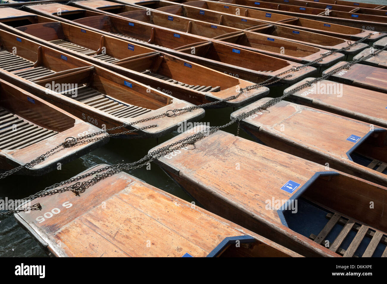Abstract pattern of Cambridge punts lined up at a mooring on the River Cam - Stock Image