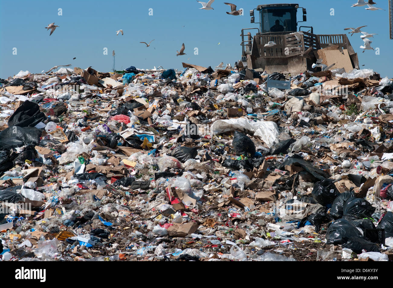 Caterpillar compactor working in a landfill - Stock Image