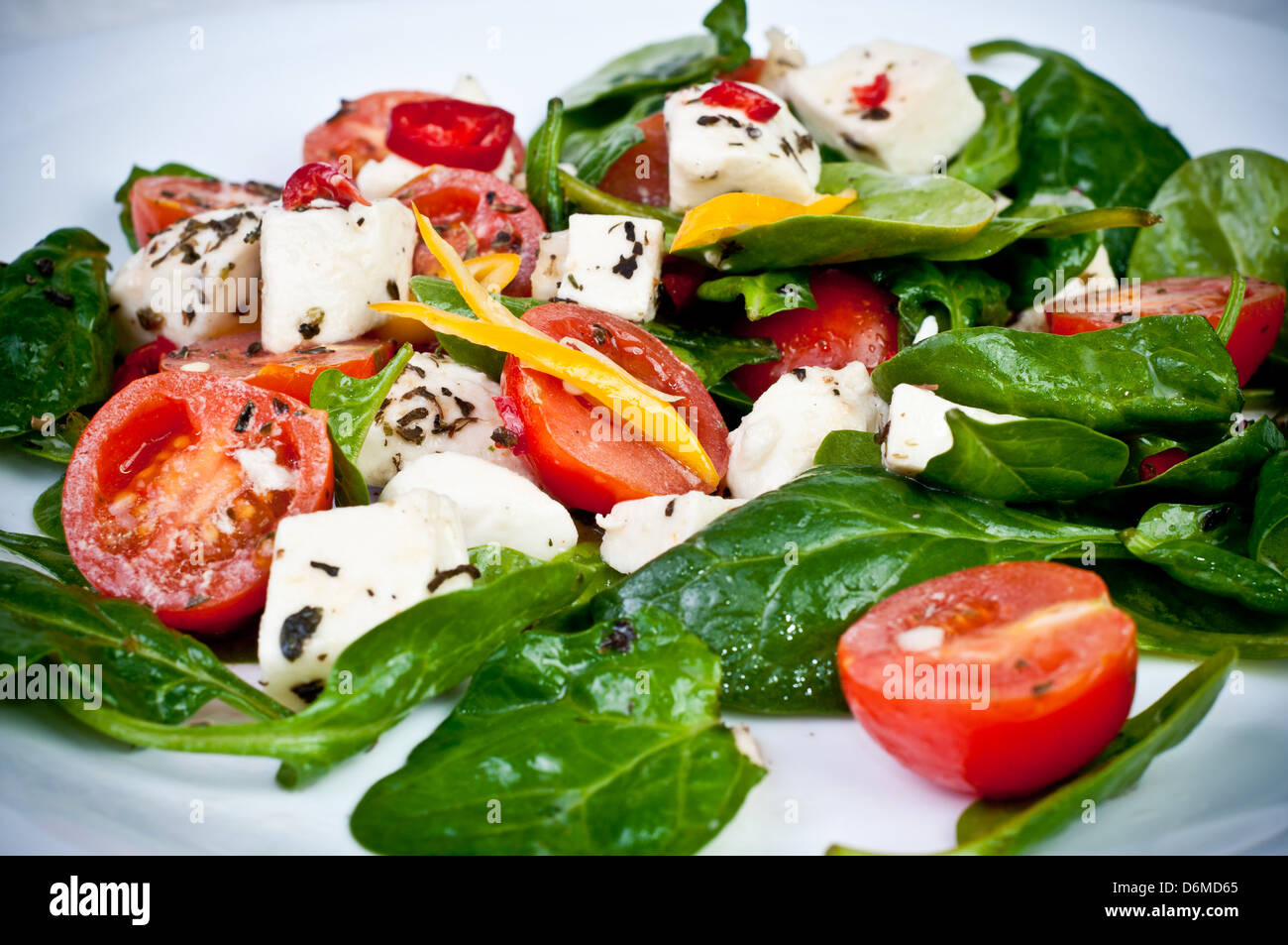 spinach lettuce with cheese mozarella and with tomatoes and spices - Stock Image