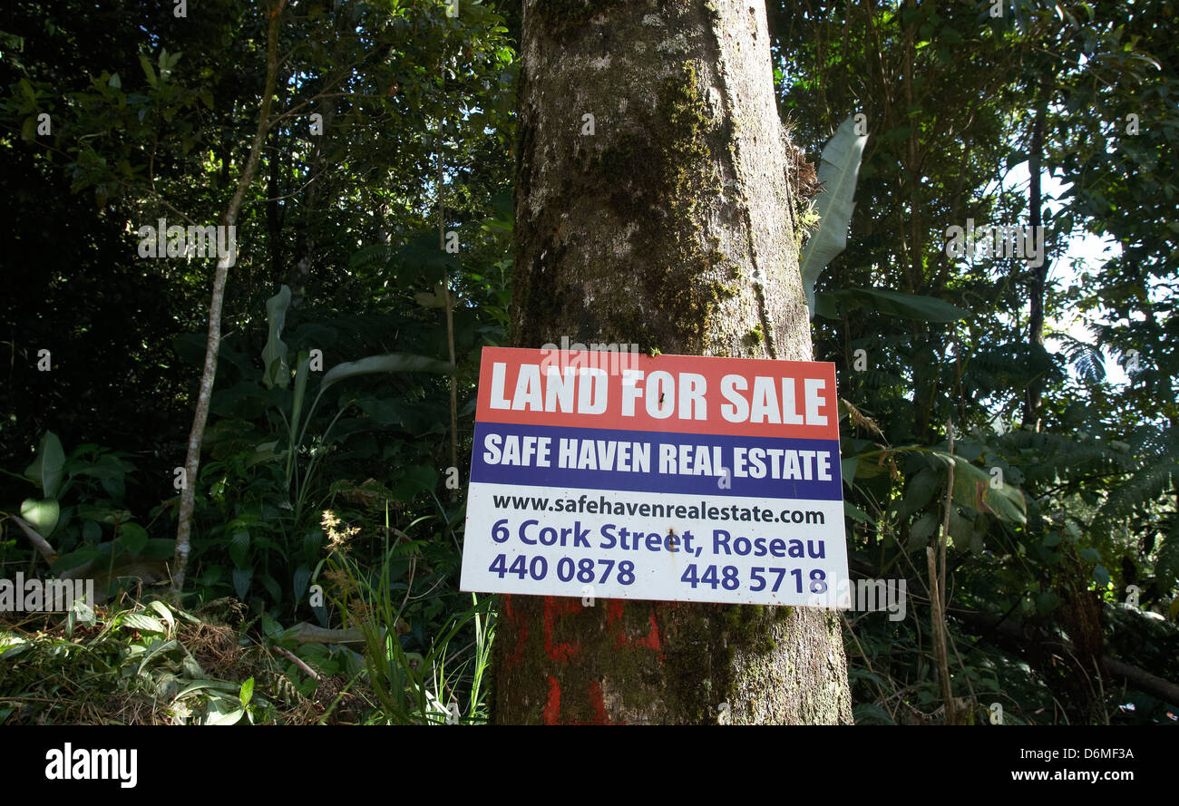 Pont casse dominica land for sale sign of a maklerbueros and waldflaechen stock