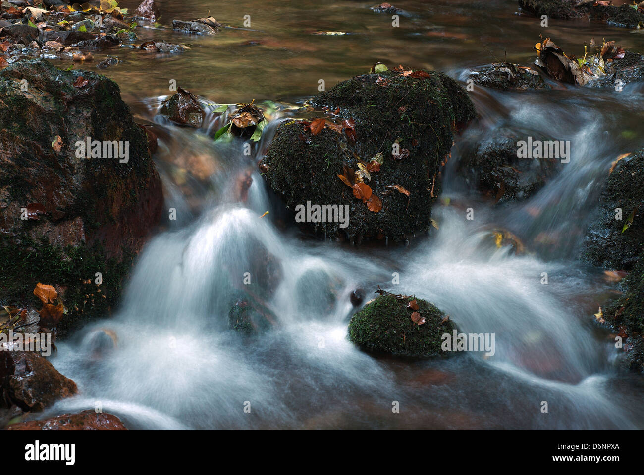 Tabarz, Germany, a stream in the Thuringian Forest Nature Park Stock Photo