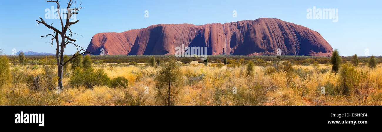 landscape landscapes outback Australian pano panorama panoramic Uluru Ayers Rock in the Northern Territory Central - Stock Image