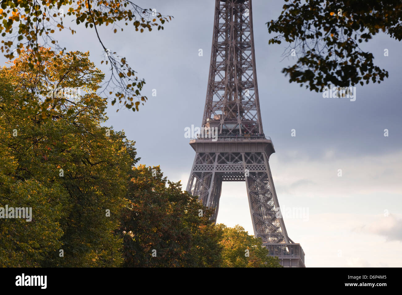 The Eiffel Tower from Champ de Mars, Paris, France, Europe - Stock Image