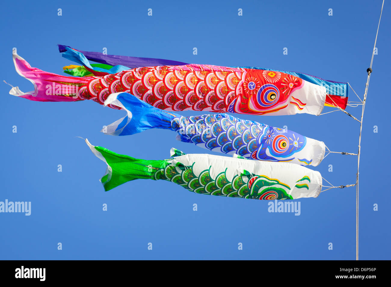 Colourful carp streamers or Koinobori flutter in the wind. - Stock Image