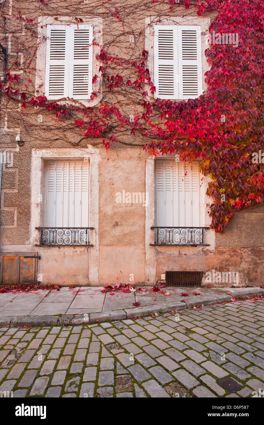 Autumn leaves in Noyers-sur-Serein, one the Beaux Villages de France, Yonne, Burgundy, France, Europe - Stock Image