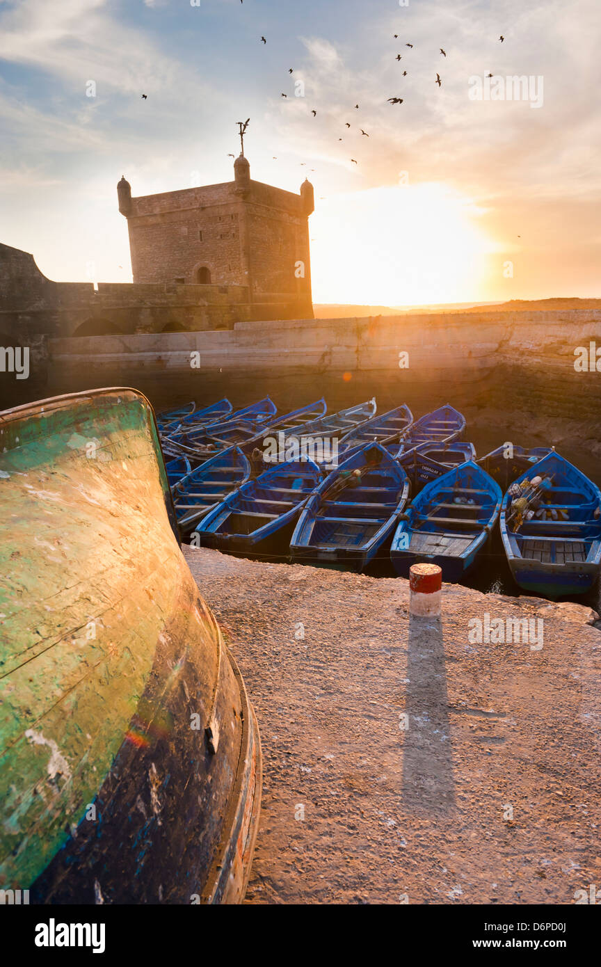 Blue fishing boats in Essaouira Port, formerly Mogador, Morocco, North Africa, Africa - Stock Image