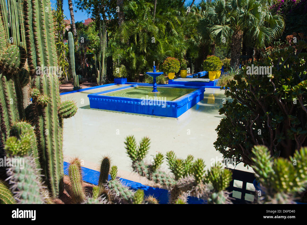 Blue fountain and cactus in the Majorelle Gardens (Gardens of Yves Saint-Laurent), Marrakech, Morocco, North Africa, - Stock Image