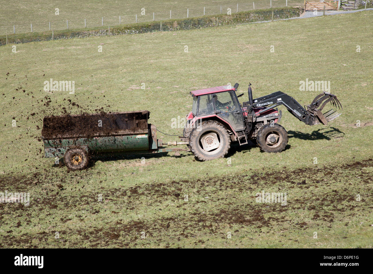 Muck Spreading; Devon; UK - Stock Image
