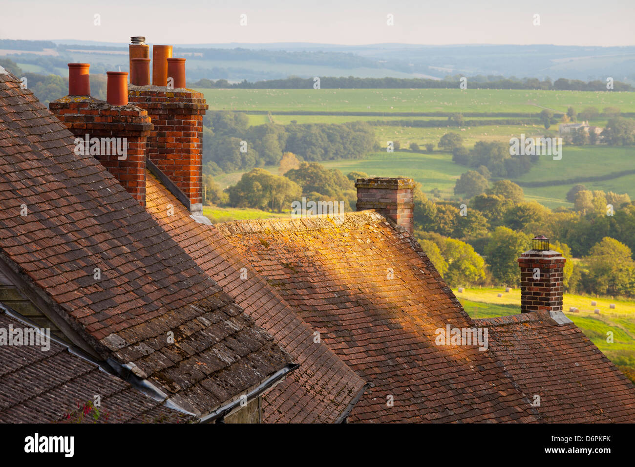 Rooftops of houses along Gold Hill, Shaftesbury, Dorset, England, United Kingdom, Europe - Stock Image