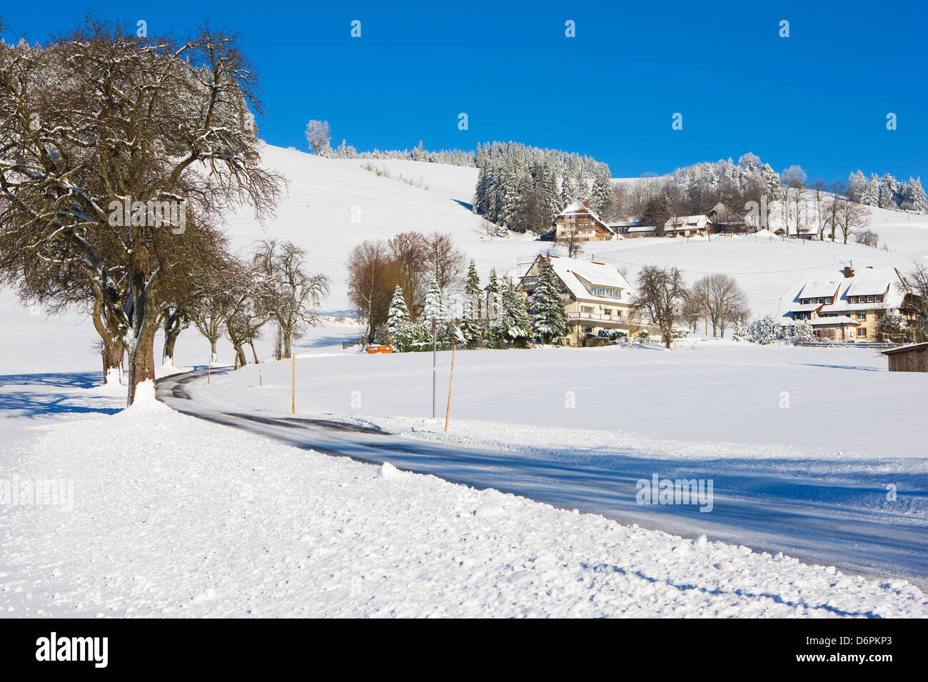Black Forest farmhouses in winter near Sankt Peter (Saint Peter), Black Forest, Baden-Wurttemberg, Germany, Europe - Stock Image