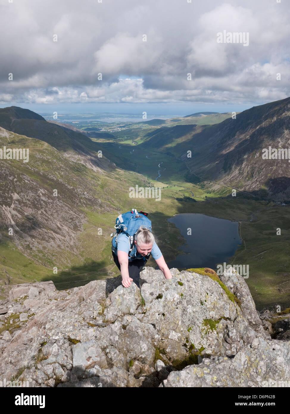 A scrambler on the Seniors Ridge approach to Glyder Fawr in Snowdonia's Y Glyderau mountains. Llyn Idwal & - Stock Image