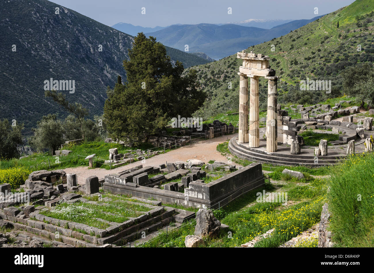 The circular Tholos at the Temple of Athena Pronaia, Ancient Delphi, Thessaly, Greece. Stock Photo