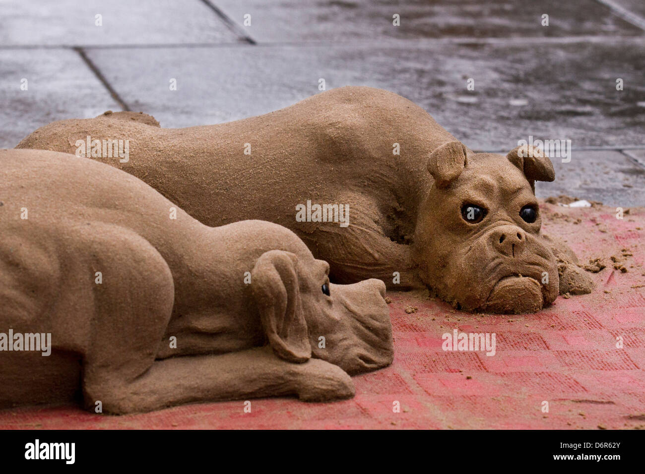 Close-up of carved, shaped, Sand Sculpture of two Dogs on the pavement in Piccadilly Manchester, UK - Stock Image