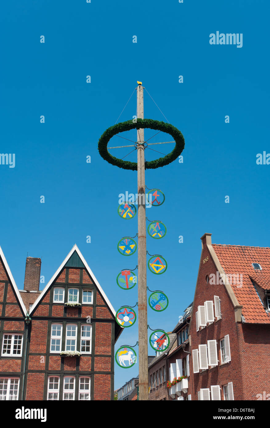 traditional maypole in munster, germany - Stock Image