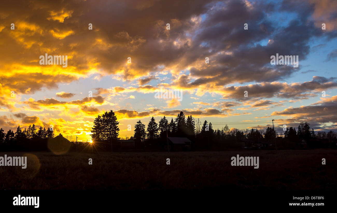 A sunset scenery with trees and powerlines in horizon. Strong contrast between indigo/yellow clouds and blue sky. - Stock Image