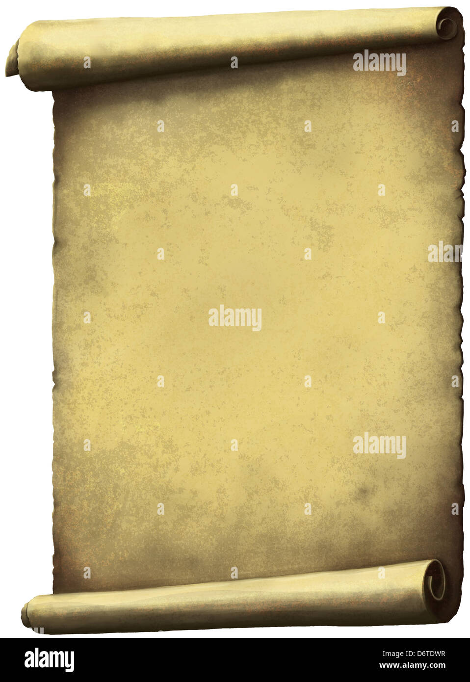Old Scroll paper expanded vertically isolated on white. - Stock Image