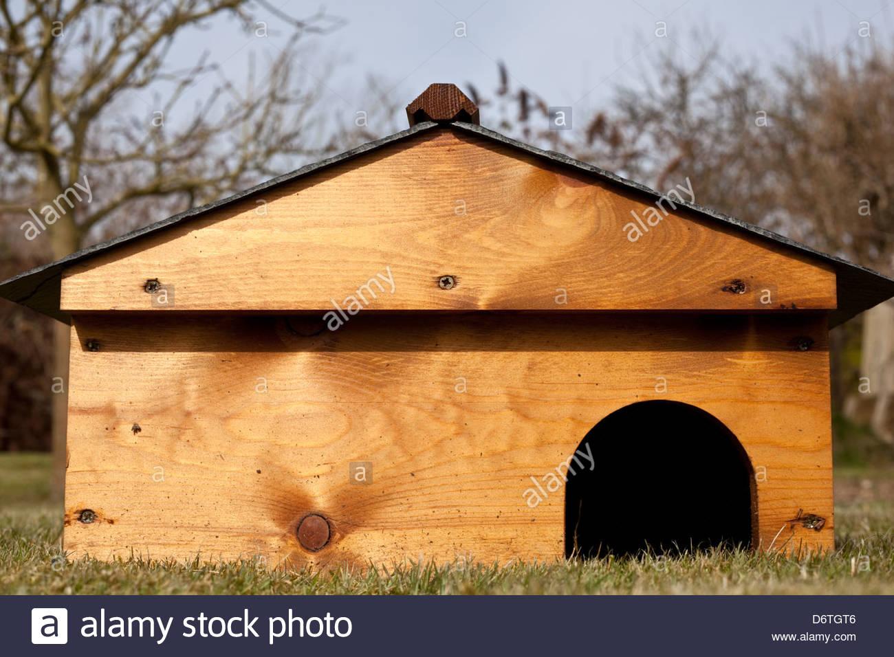 Hedgehog house - Stock Image