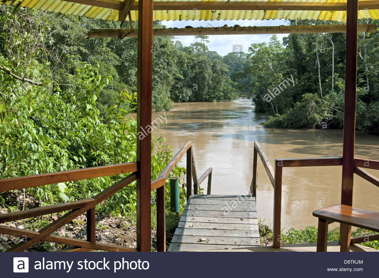 Amazon Rainforest Research Stock Photos & Amazon ... | 1300 x 953 jpeg 306kB