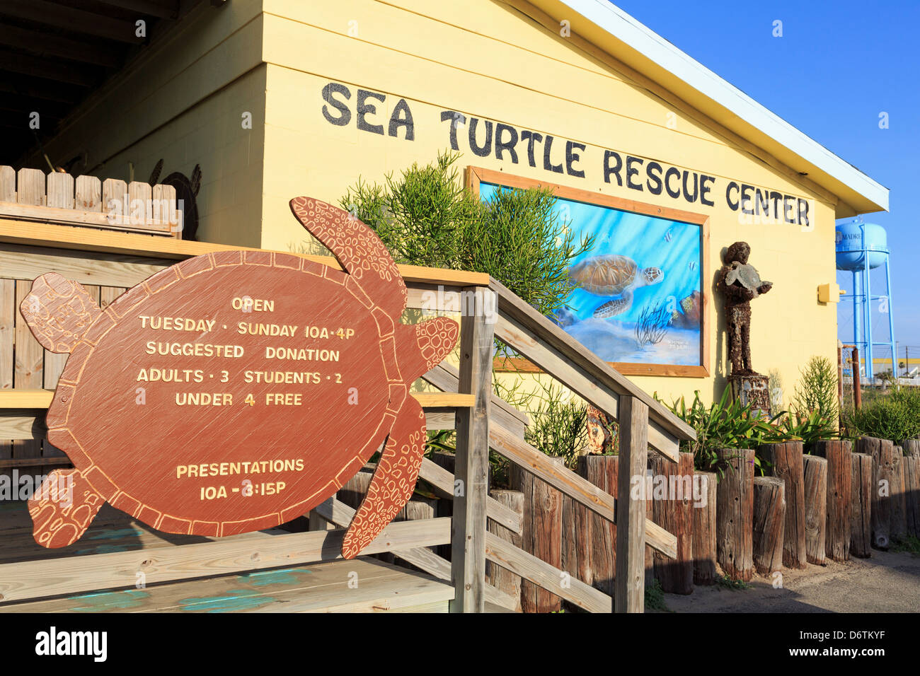 South Padre Island Sea Turtle Resuce