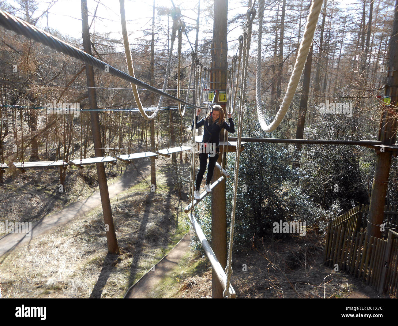 teenager on the GO Ape obstacle course at Dalby forest , england uk Stock Photo