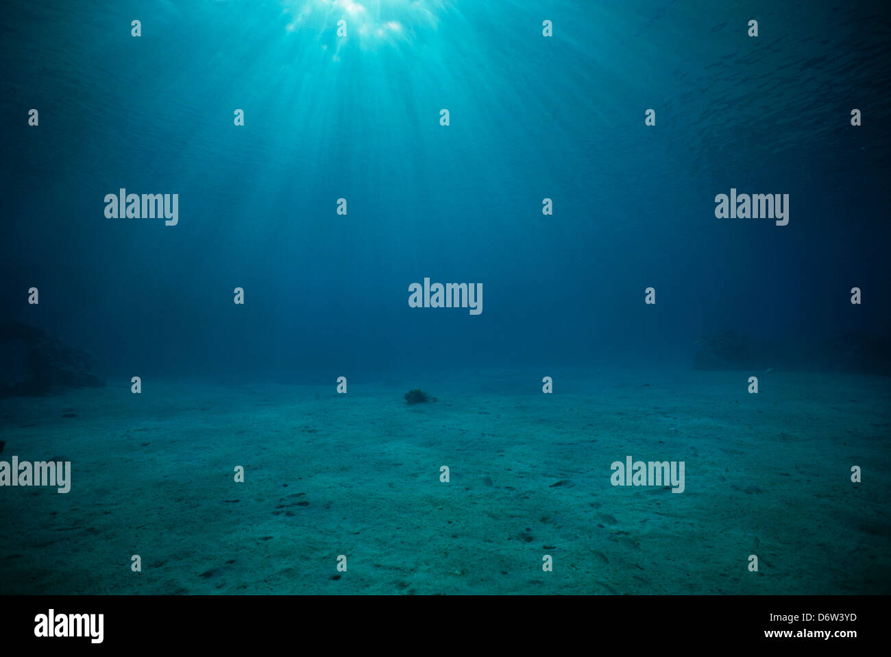Sun shines through the surface of the water of Dolphin Reef, Eilat, Israel, Red Sea, Egypt. - Stock Image