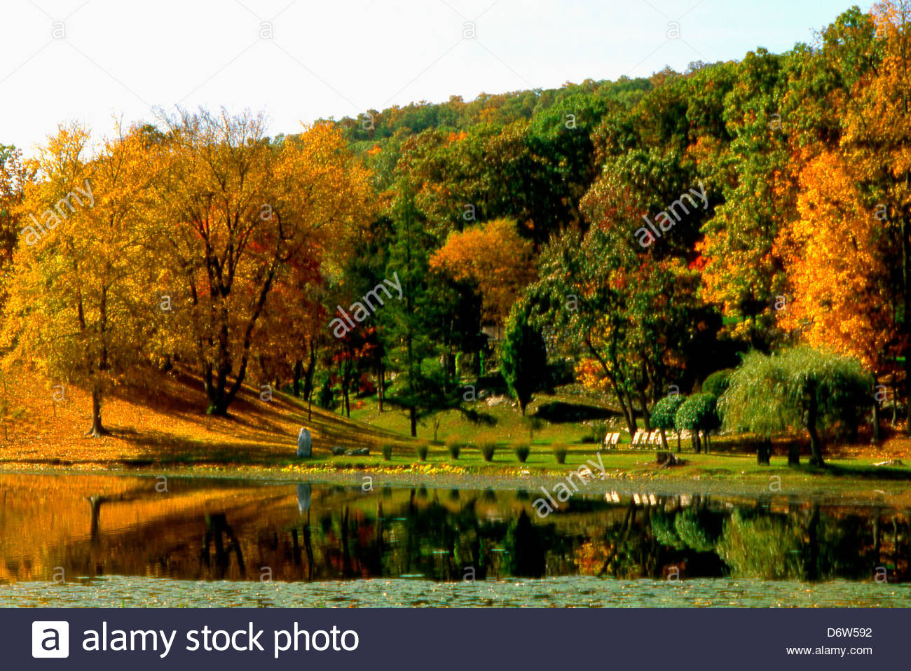 autumn colors and lake reflections at innisfree garden millbrook new york state usa - Innisfree Garden