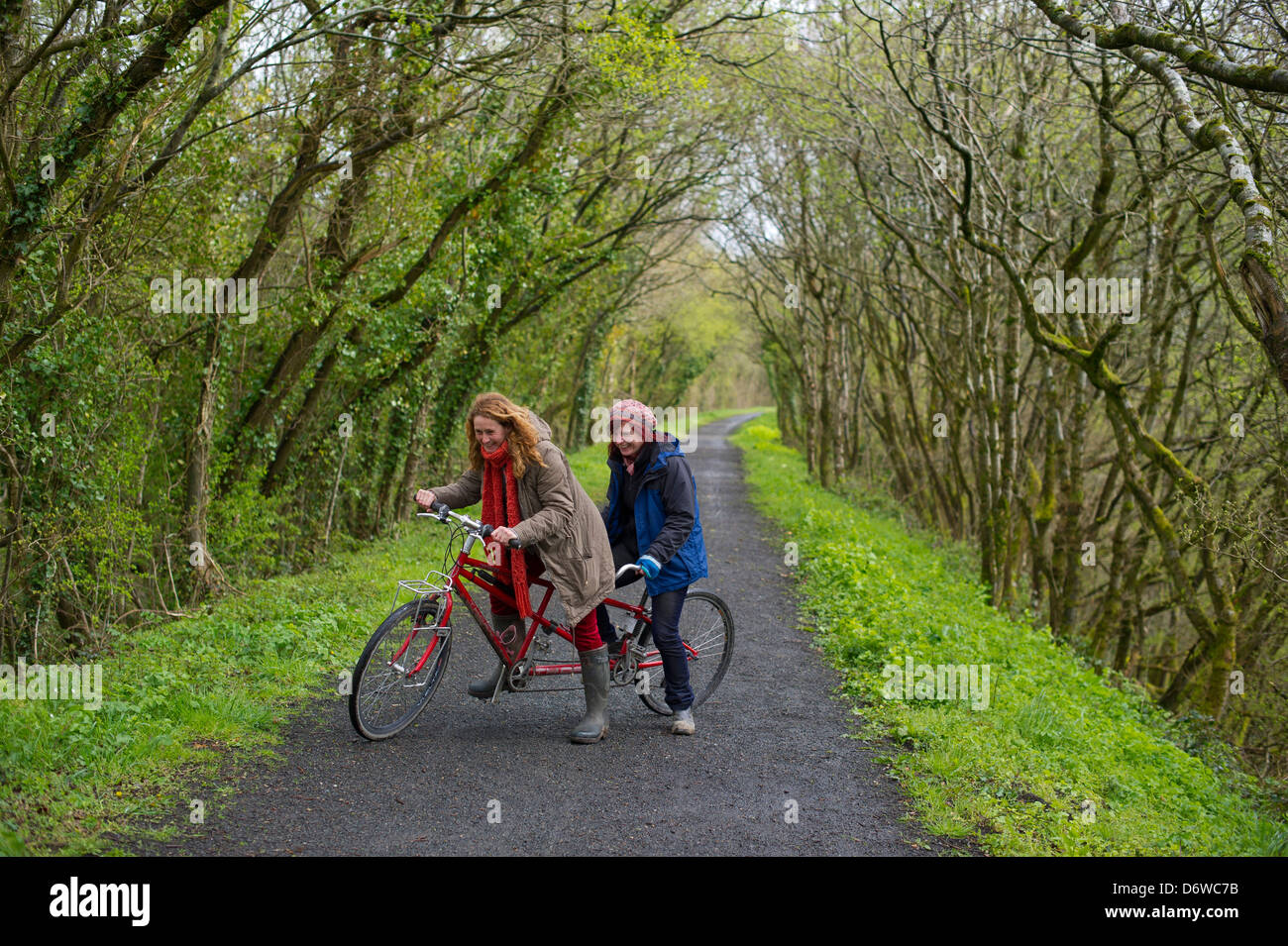 The Tarka Trail, in North Devon, between Torrington and East Yard. Two ladies on a tandem bicycle on part of the - Stock Image
