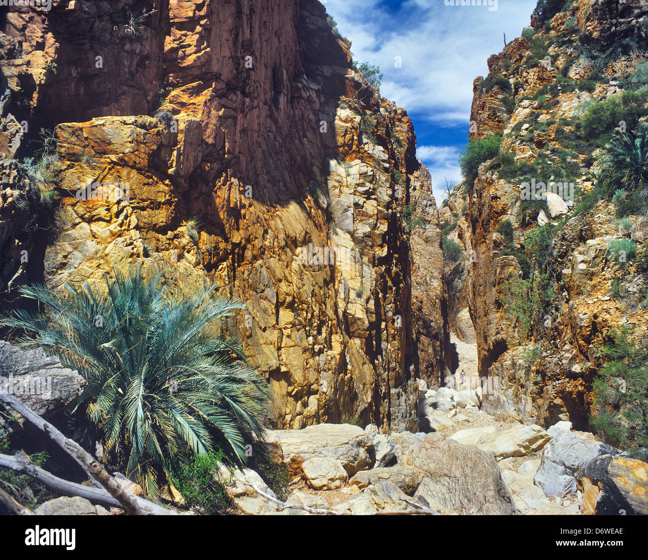 Australia, Northern Territory, Standley Chasm in the MacDonnell Ranges - Stock Image