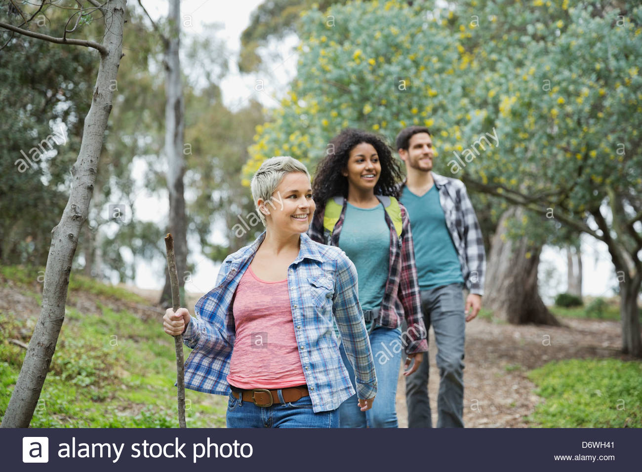 Happy friends hiking together in forest - Stock Image