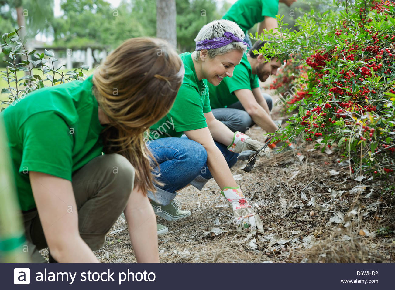 Group of environmentalists cleaning up park - Stock Image