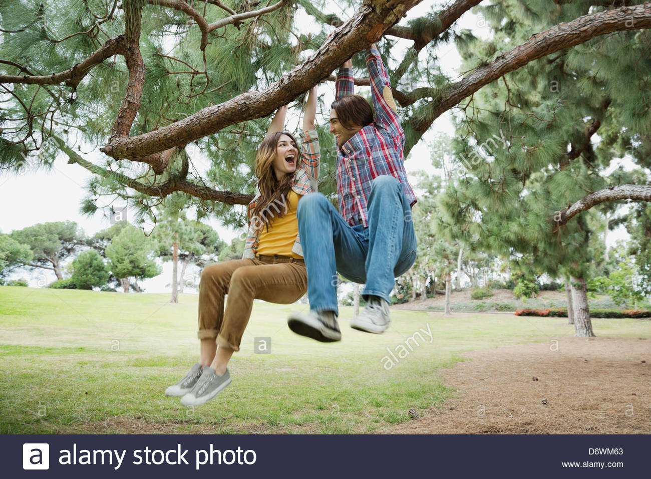 Playful young couple looking at each other while swinging on tree branch in park - Stock Image
