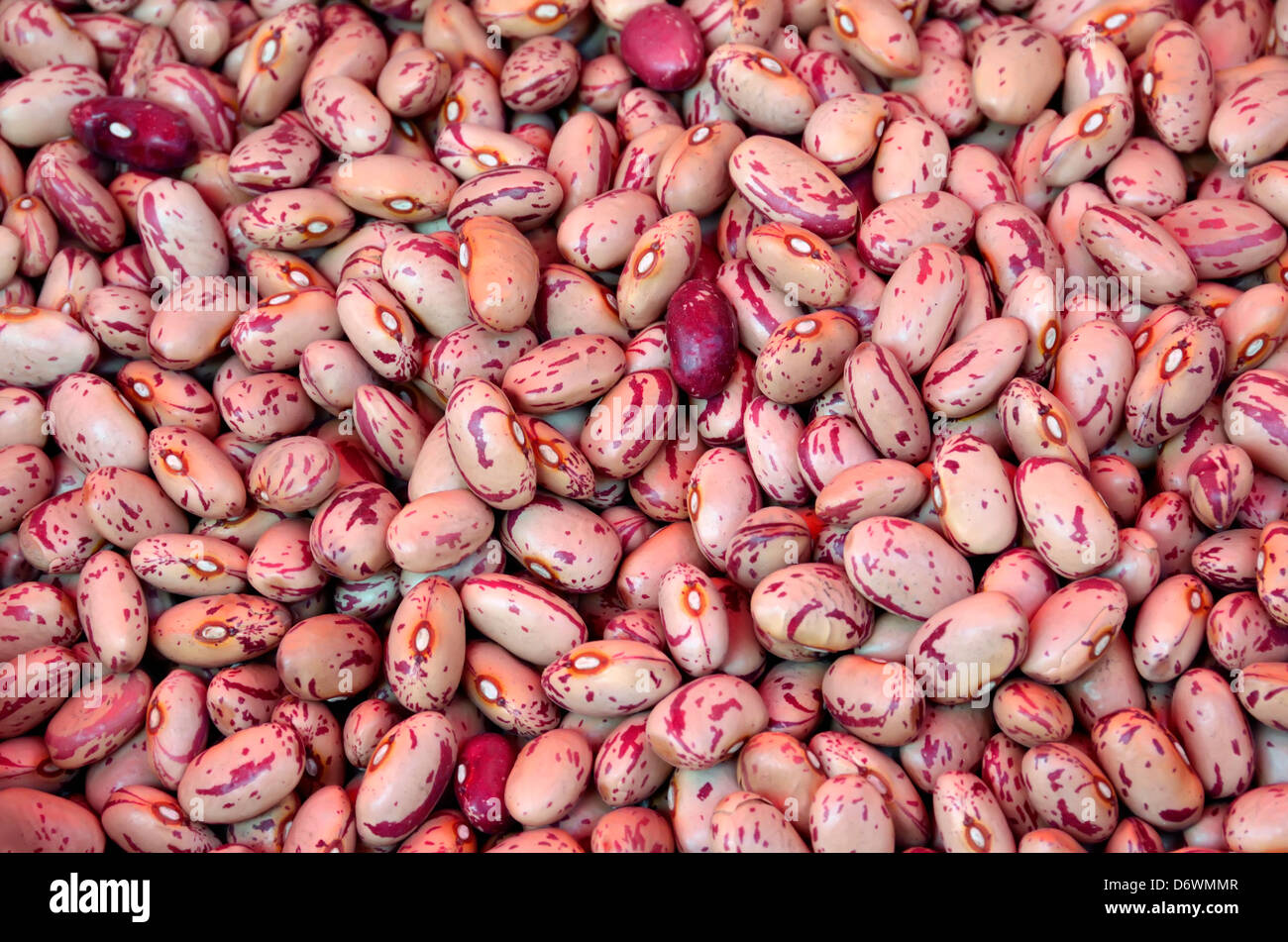 Beans for sale in the Ortygia market in Siracusa, Sicily, Italy. - Stock Image