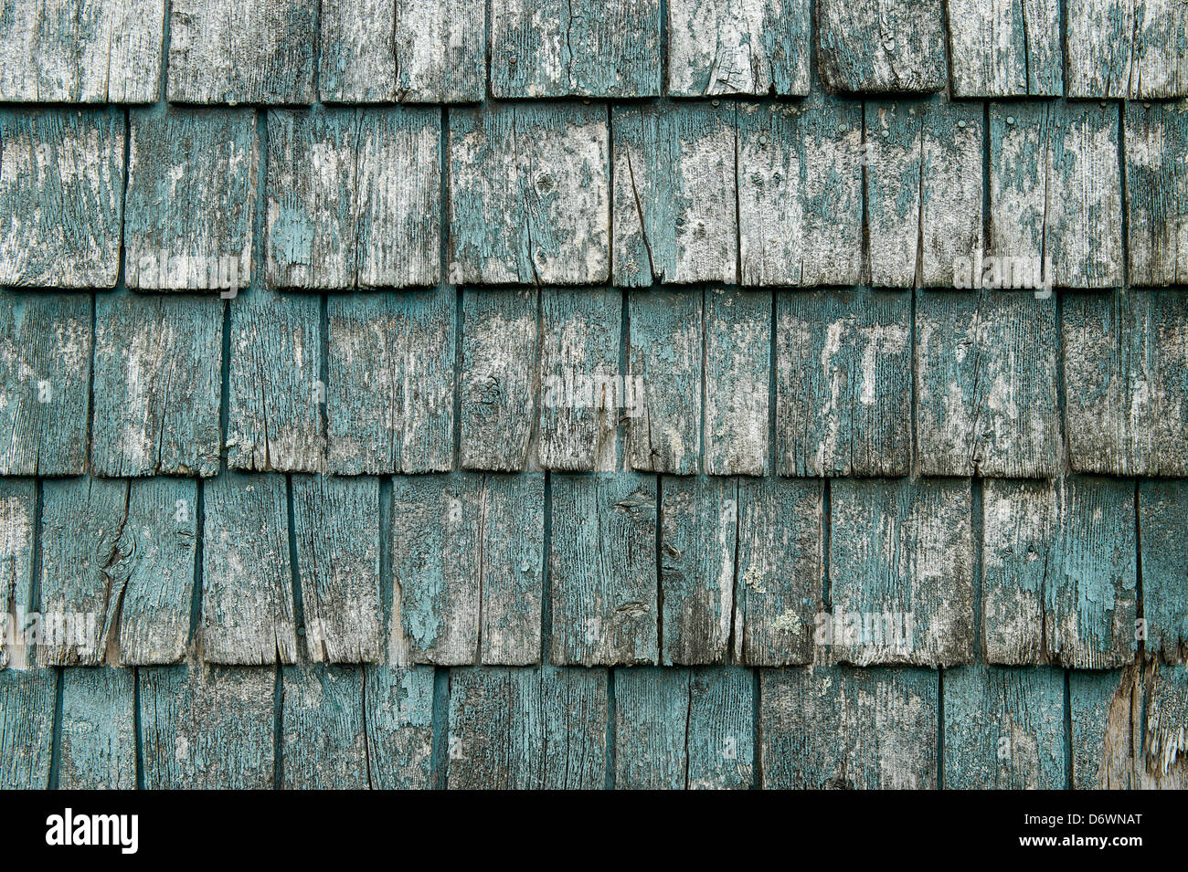 Weathered wooden shingle detail. - Stock Image