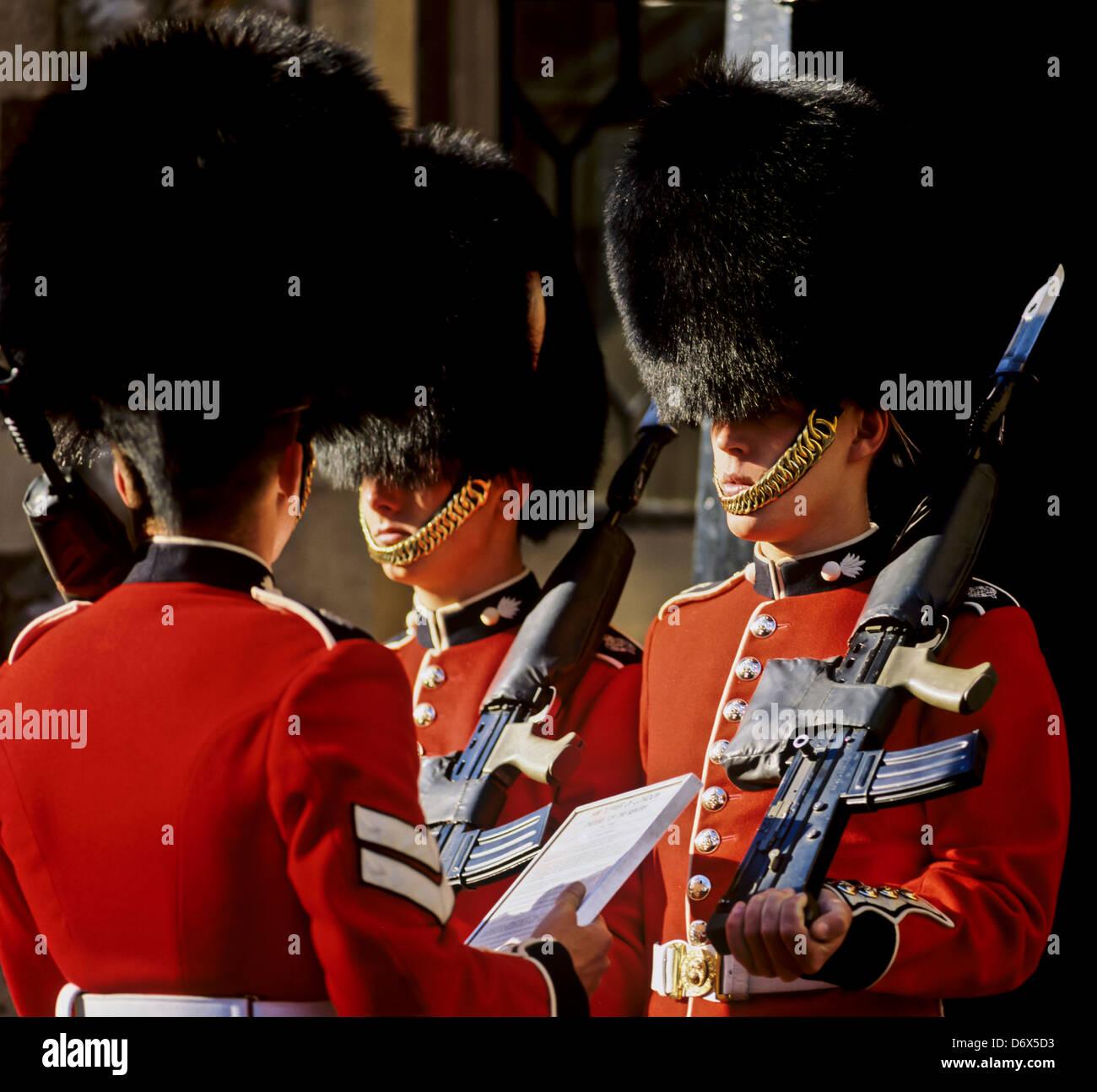8557. Guardsmen, London, England, Europe - Stock Image