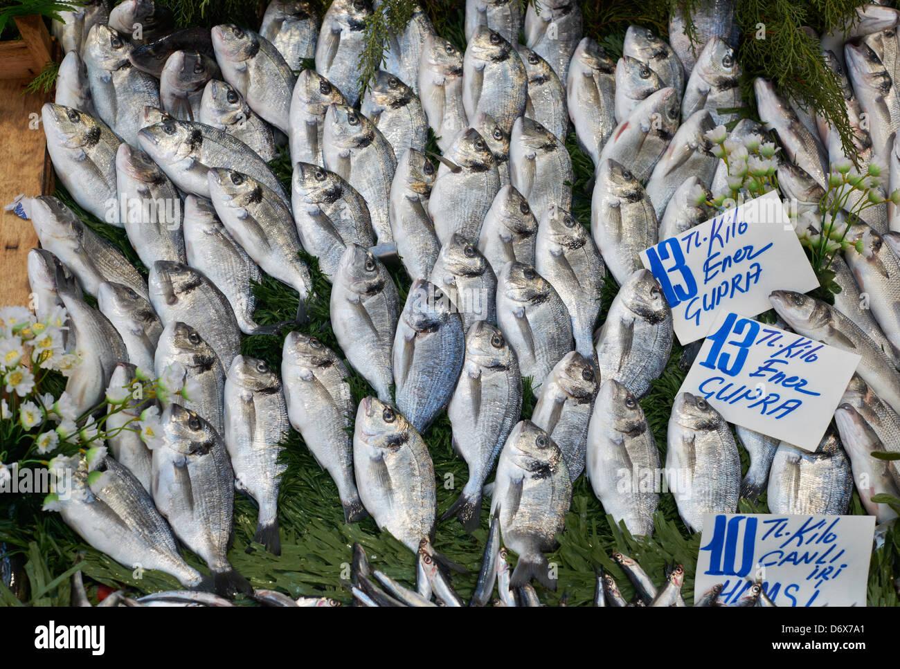 Fresh bream fish from the Mediterranean sea on the fish market in Edirne, turkey Stock Photo