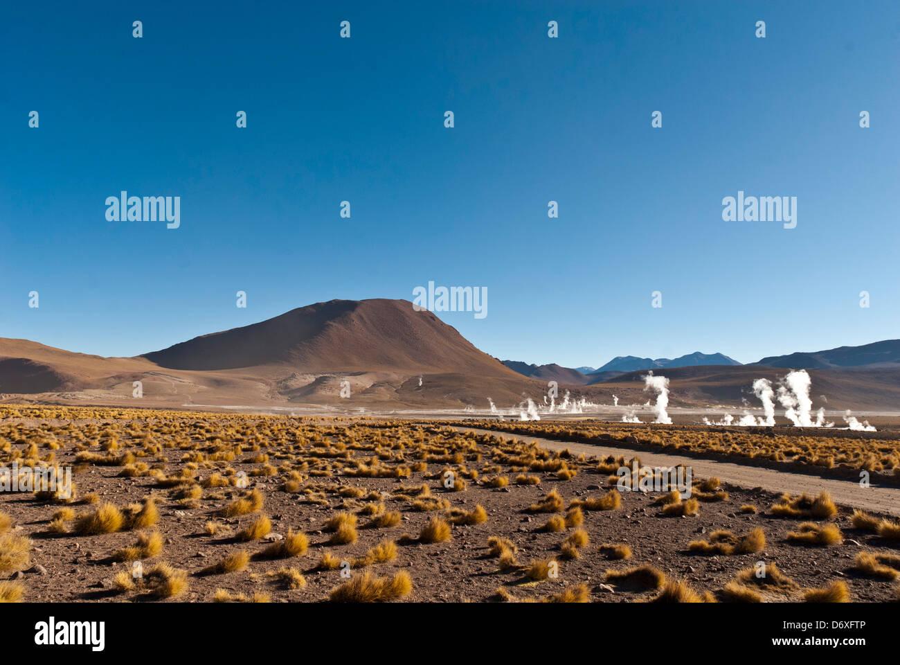 Gysers del Tatio (El Tatio geysers), Atacama, Chile, South America - Stock Image