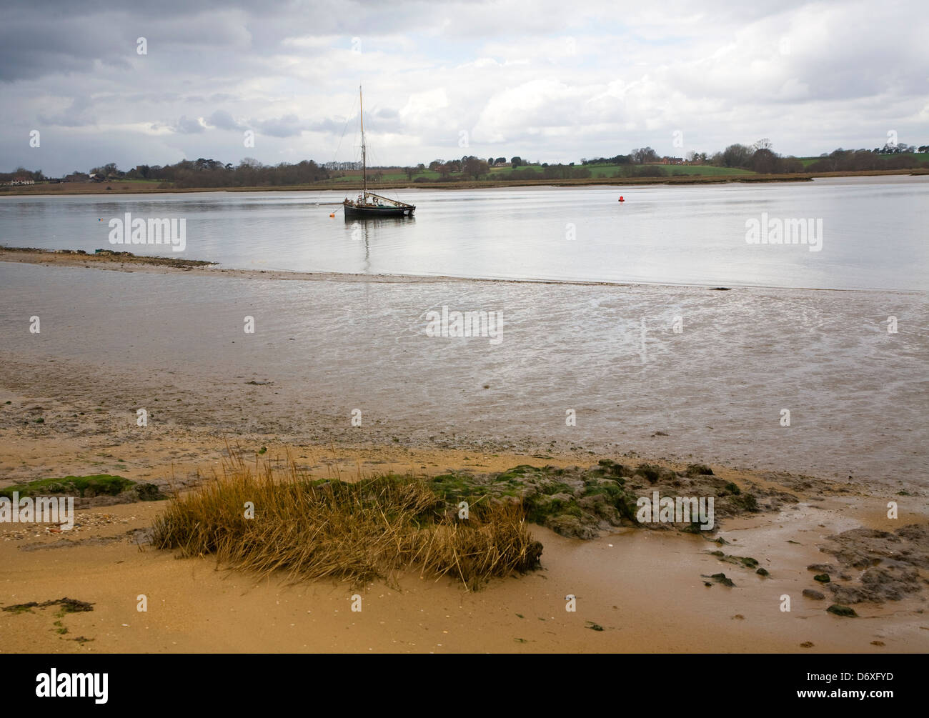 Yacht at moorings River Deben, Ramsholt, Suffolk, England - Stock Image