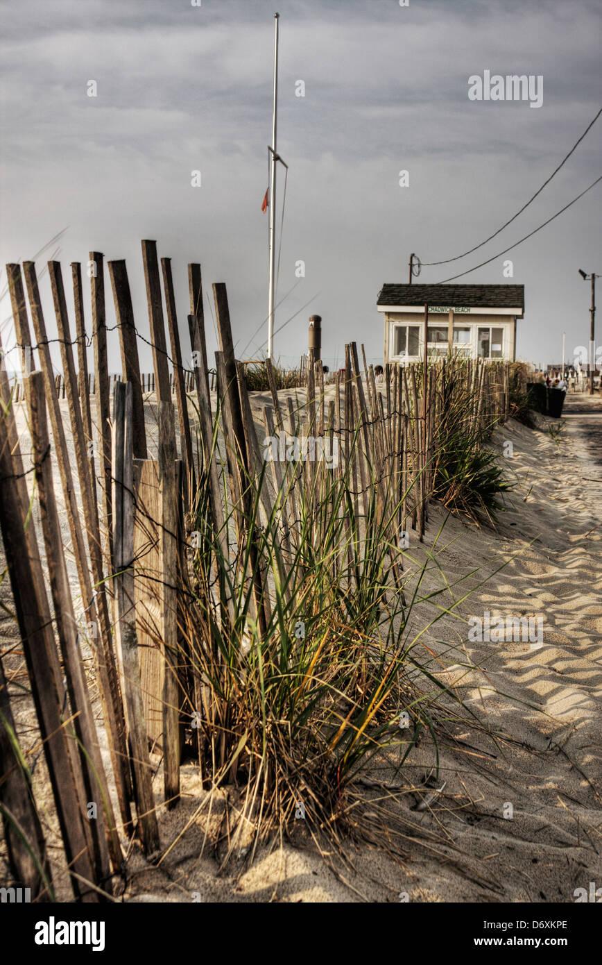 The dunes at Chadwick Beach NJ before hurricane Sandy. - Stock Image
