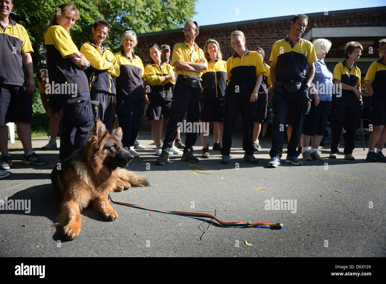 Berlin, Germany, Brieftraegern is the correct handling of dogs shown - Stock Image
