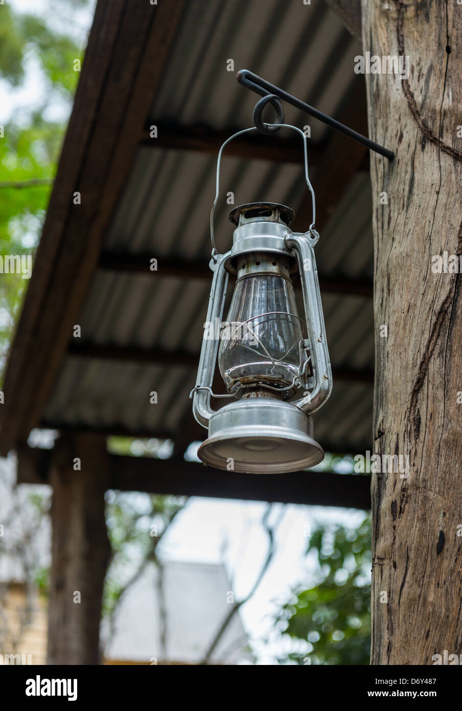 Old style lantern hanging from tree. - Stock Image