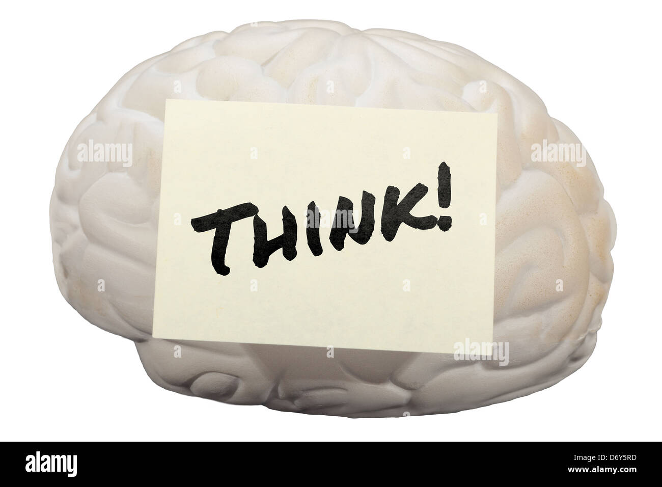 Post-it note with the word Think! on model of human brain. - Stock Image