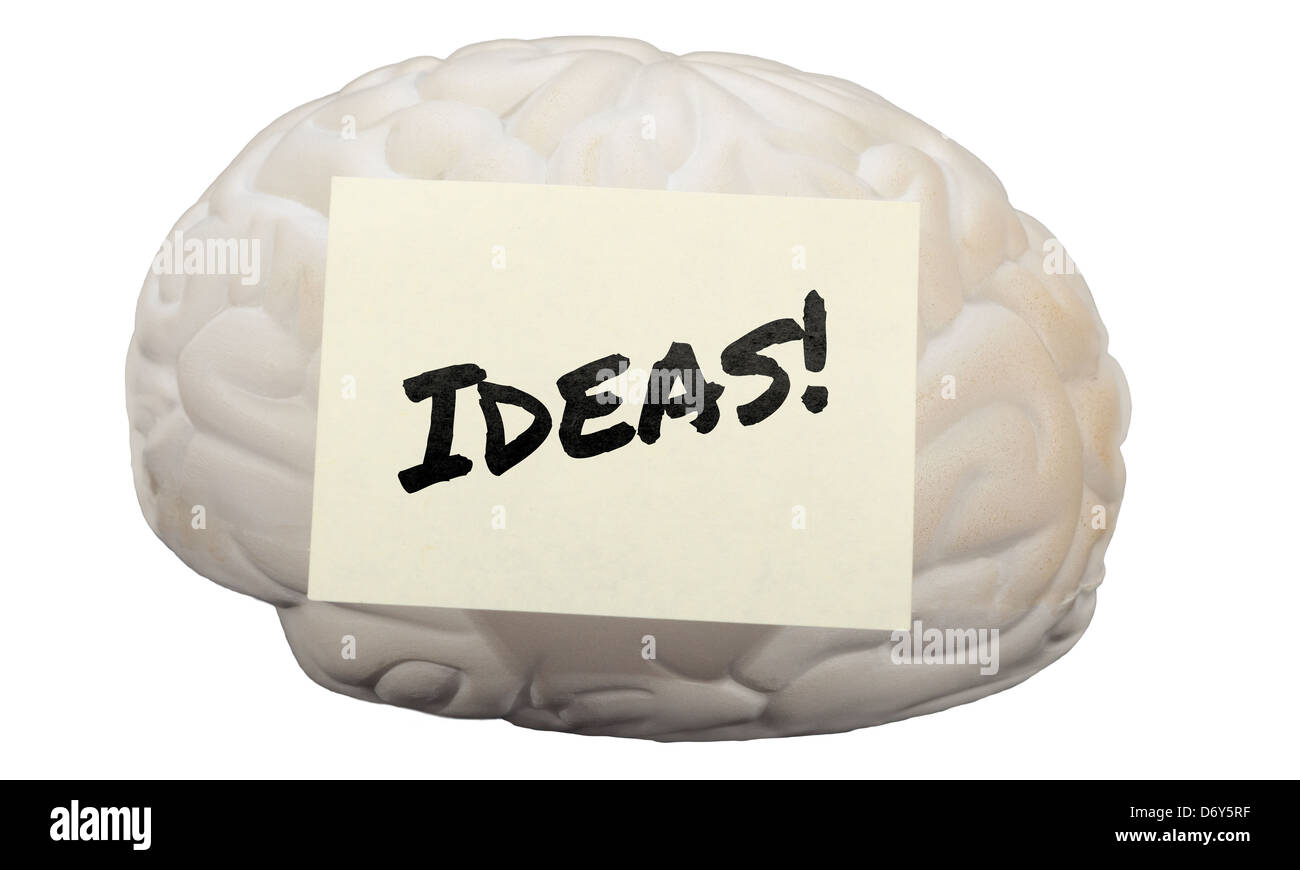 Post-it note with the word Ideas! on model of human brain. - Stock Image