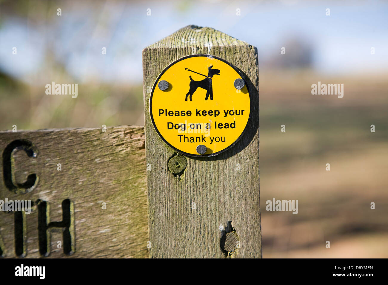 ´Please keep your dog on a lead Thank You´ sign on public footpath, UK - Stock Image