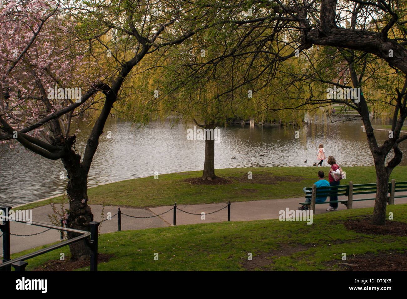 Springtime Boston Public Gardens Stock Photos & Springtime Boston ...