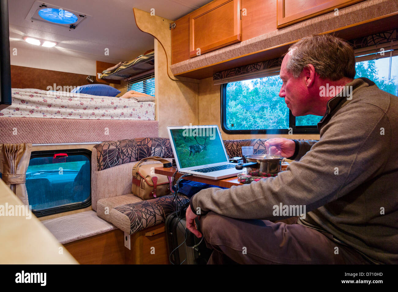 Professional photographer editing digital photographs on laptop computer inside a camper truck, Denali National - Stock Image