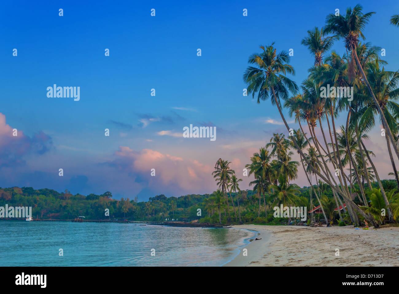 sunrise on a tropical beach - Stock Image