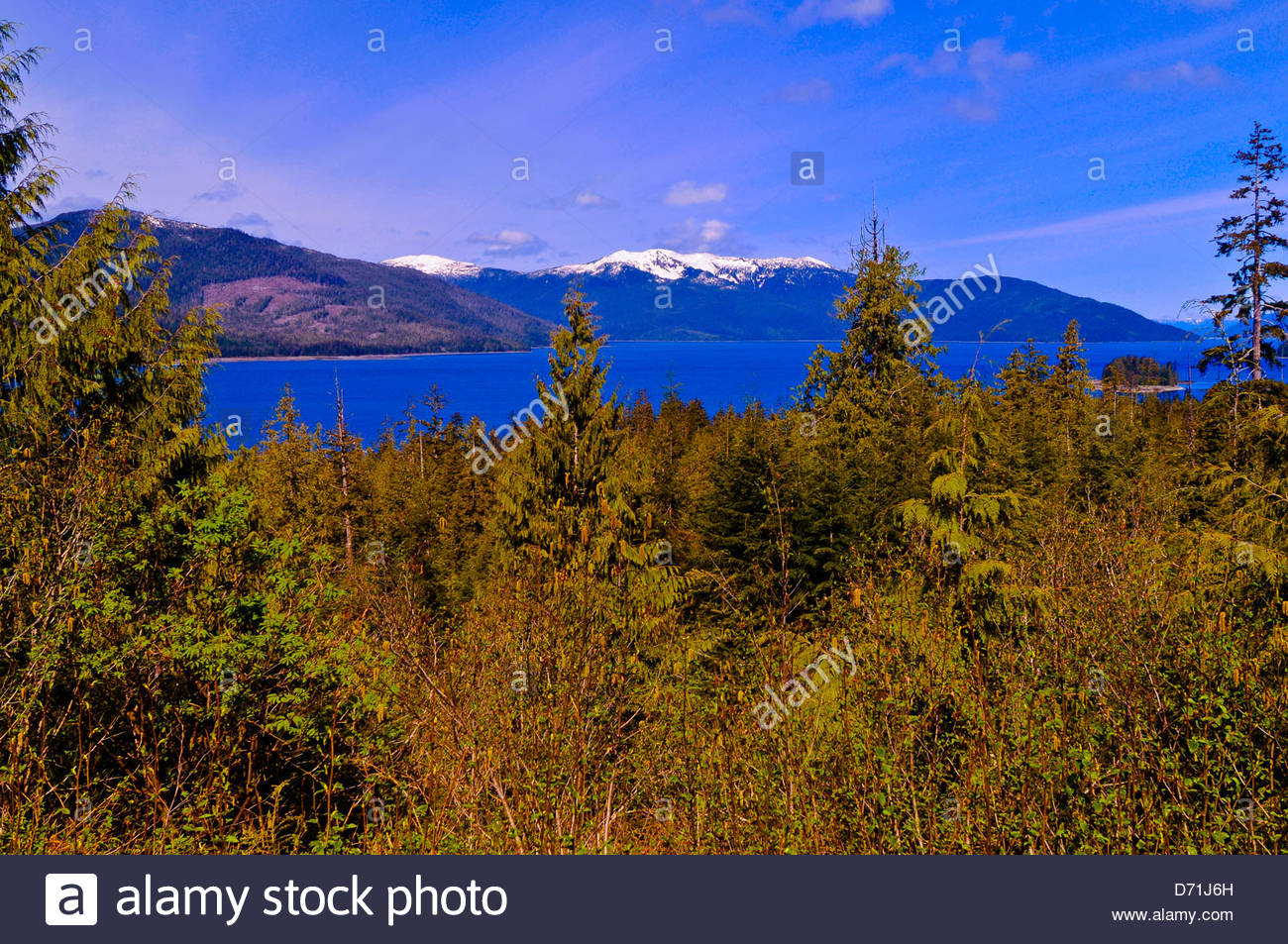 Views from Three Sisters Overlook, Nemo Point, Tongass National Forest near Wrangell, Southeast Alaska USA - Stock Image