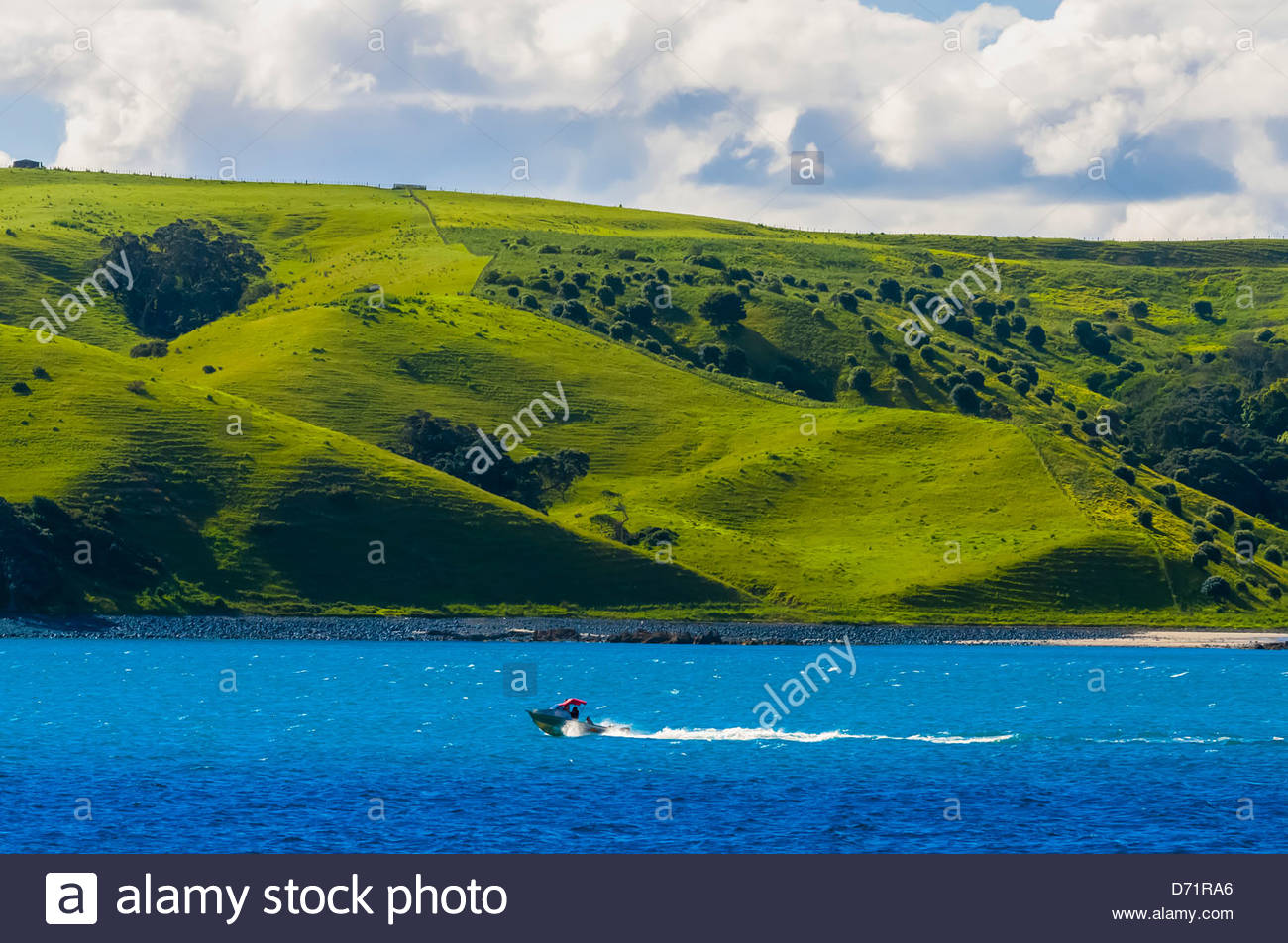 Hauraki Gulf, near Auckland, New Zealand - Stock Image